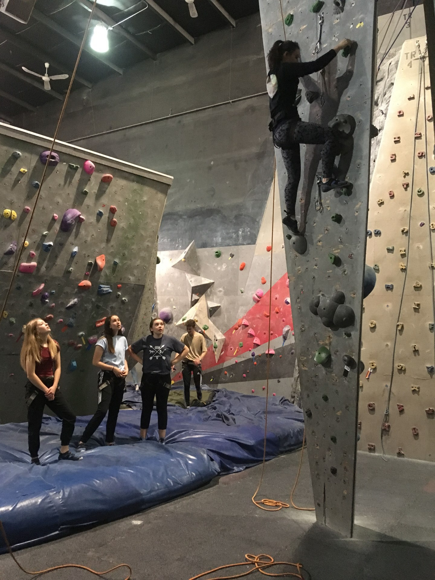 Outood Ed 2018 Indoor Rock Climbing 3.jpg