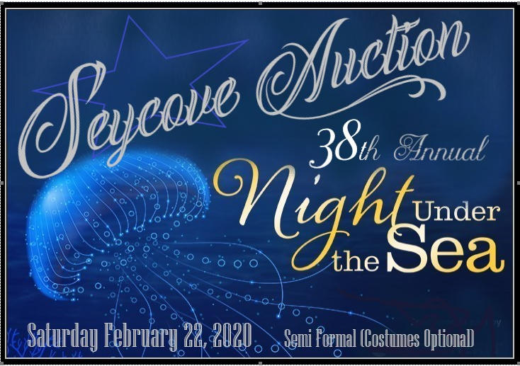 Seycove Auction 2020 image.PNG