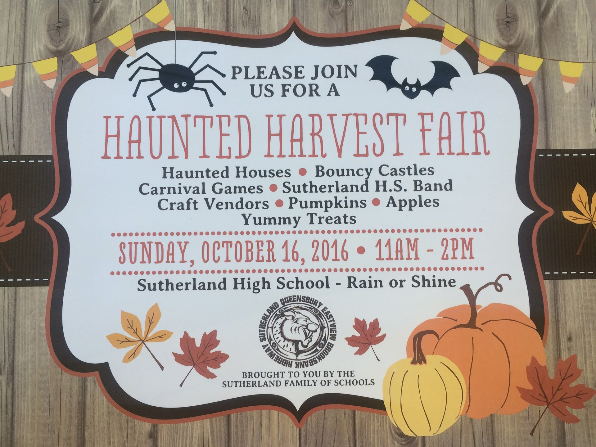 Family of Schools Harvest Fair at SUTHERLAND SECONDARY